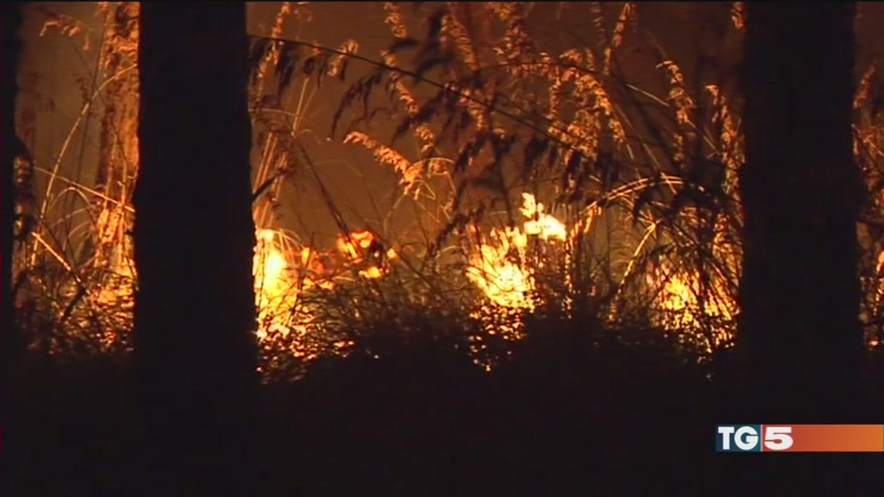 Roghi, 2 morti a Tivoli. 371 incendi fino a oggi