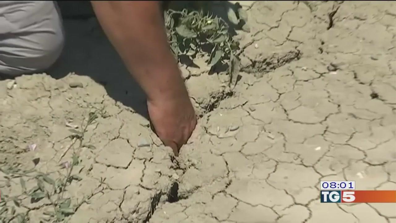 Contro la siccità si spera nella pioggia