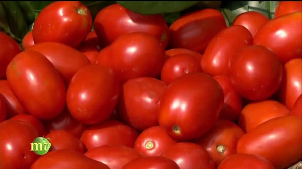 Pomodori italiani