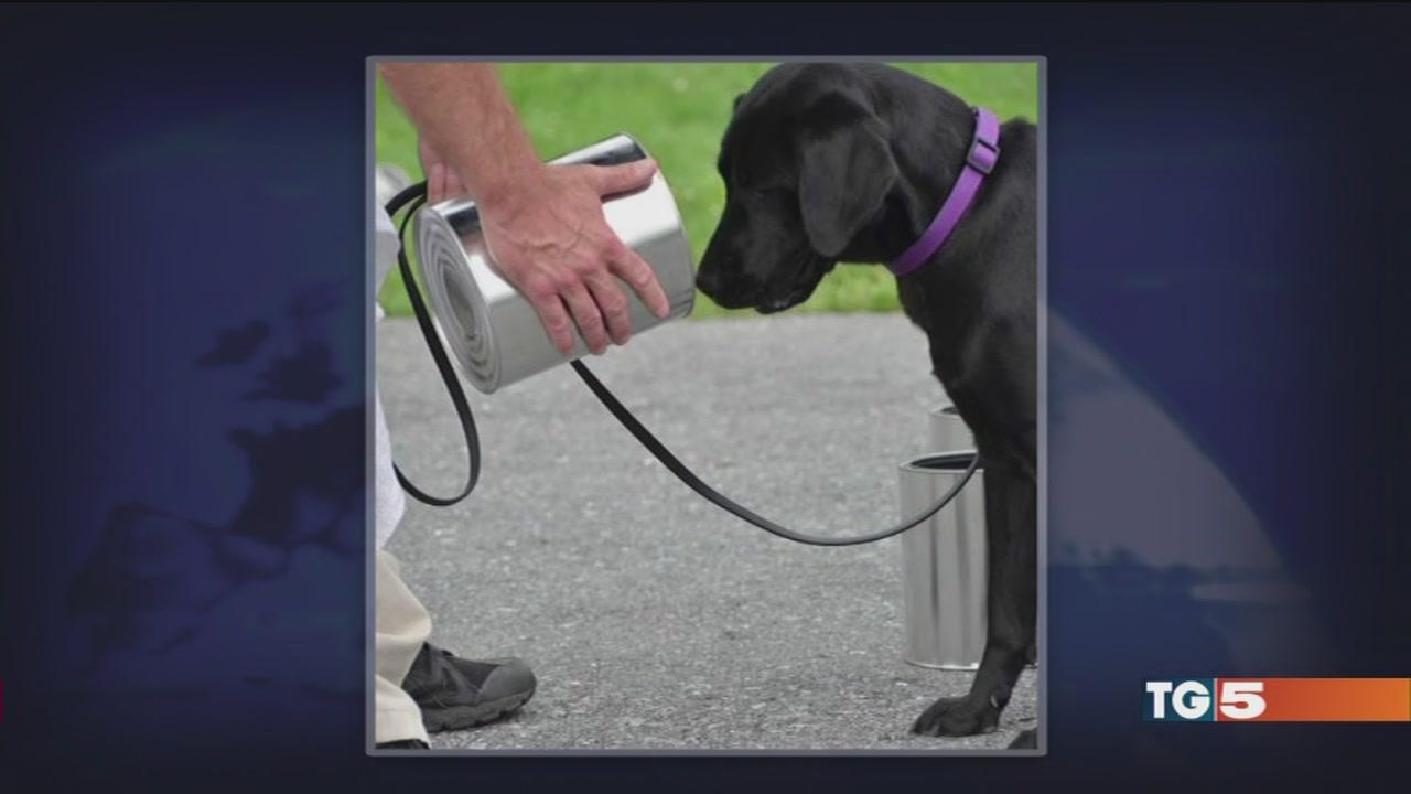 La storia di un Labrador della Cia