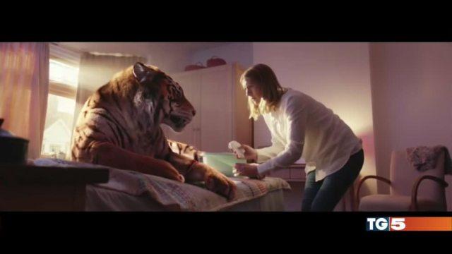 La tigre ferita del WWf lo spot che commuove