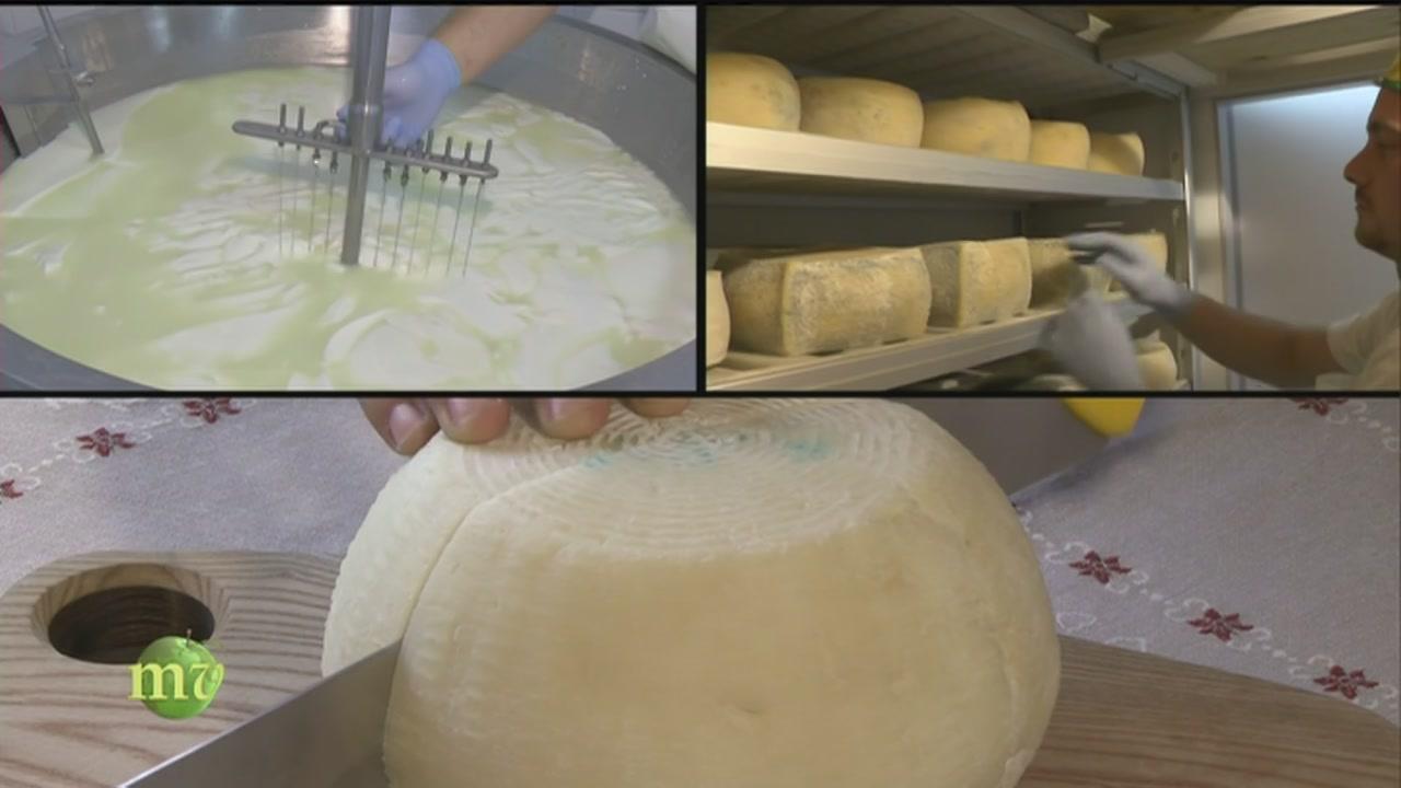La produzione di formaggi