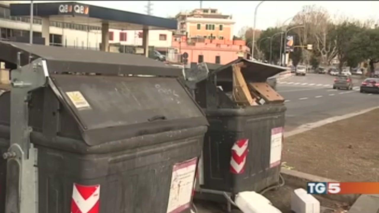 Rifiuti a Roma, è caos Spelacchio senza pace
