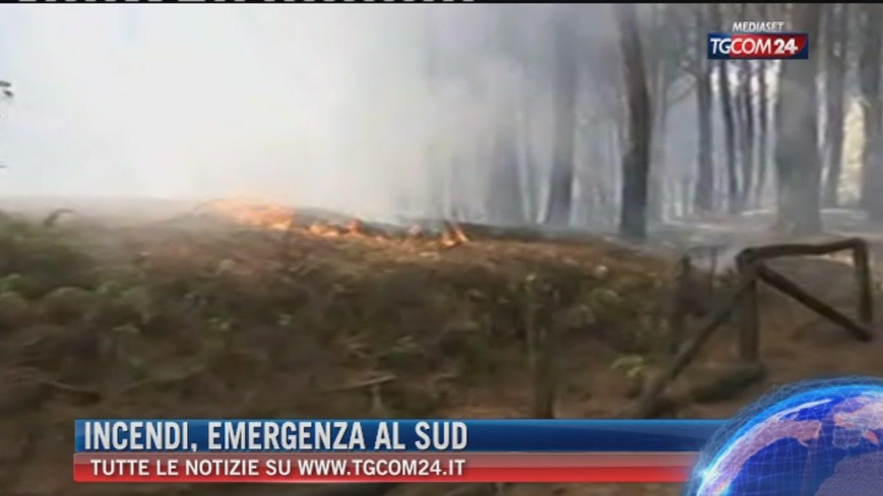 Emergenza roghi al Sud: fiamme su Vesuvio e Gargano, migliora in Sicilia