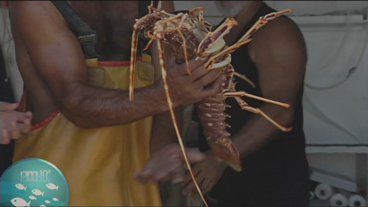 Pesca turismo a La Caletta, Orosei