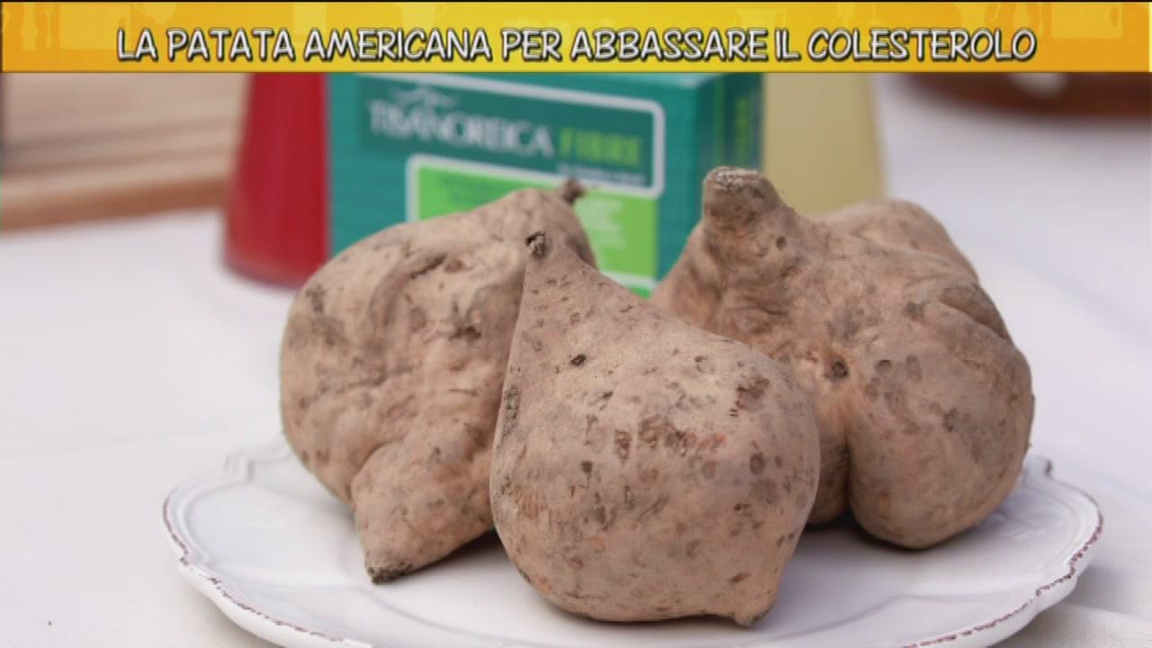 Le proprietà della patata americana