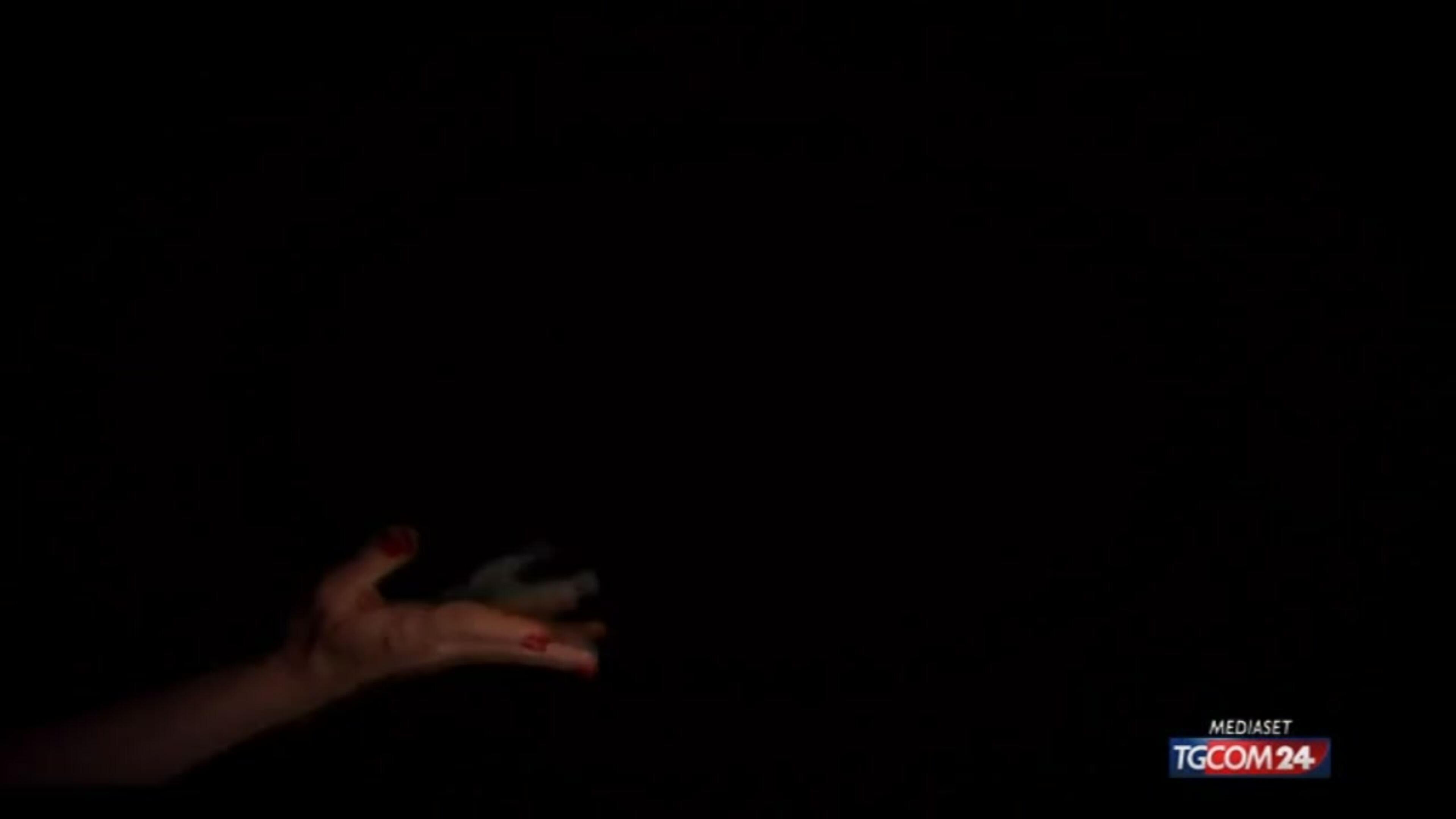 Venezia, il trailer del film su Vasco
