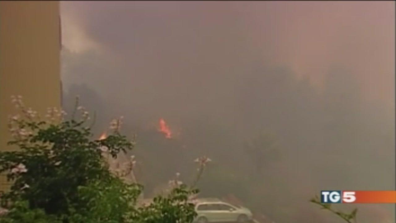 In 1 mese 260000 ettari distrutti dalle fiamme