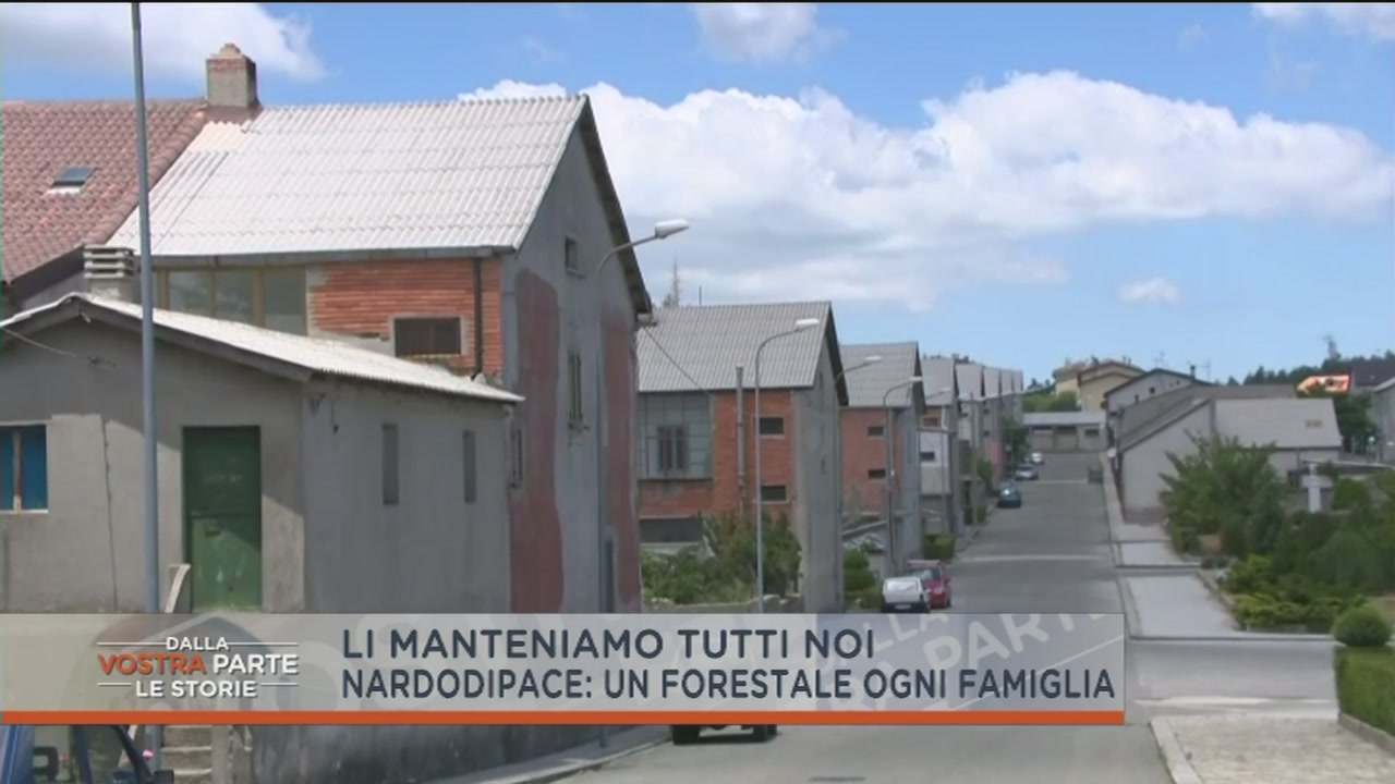 Nardodipace: un forestale ogni famiglia