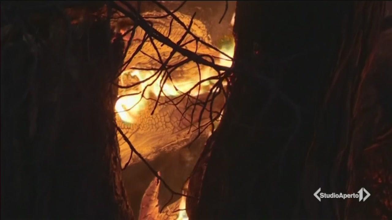 Costa Azzurra, inferno di fiamme