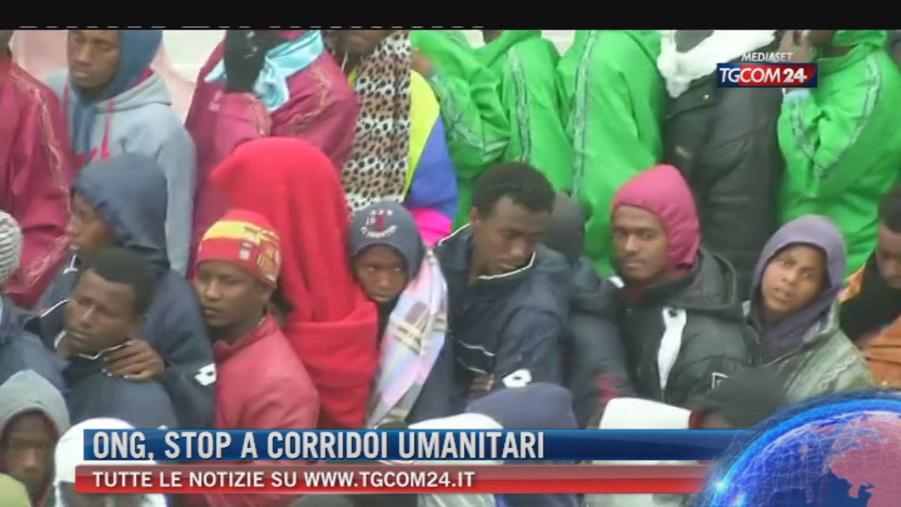 """Migranti, commissione Difesa: """"Stop ai corridoi gestiti dalle ong"""""""