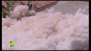 Cervia, terra di sale