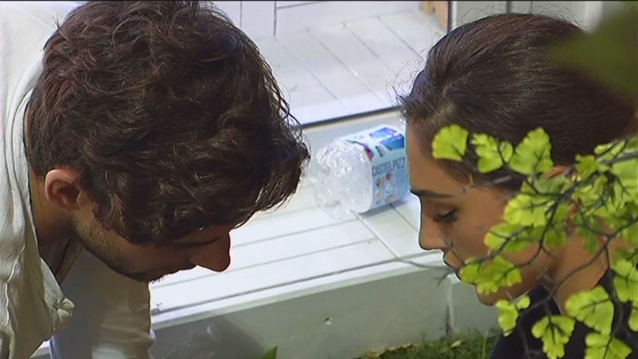 Cecilia e Ignazio si parlano