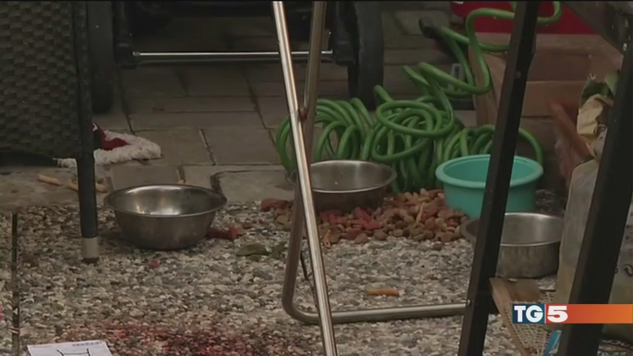Bimba di 1 anno uccisa dai due pitbull di casa