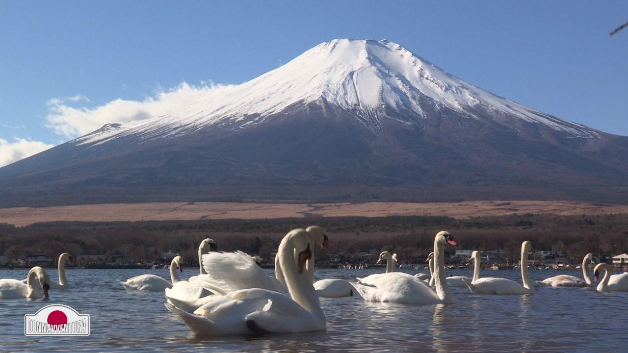 Fuji-san, il Monte Fuji