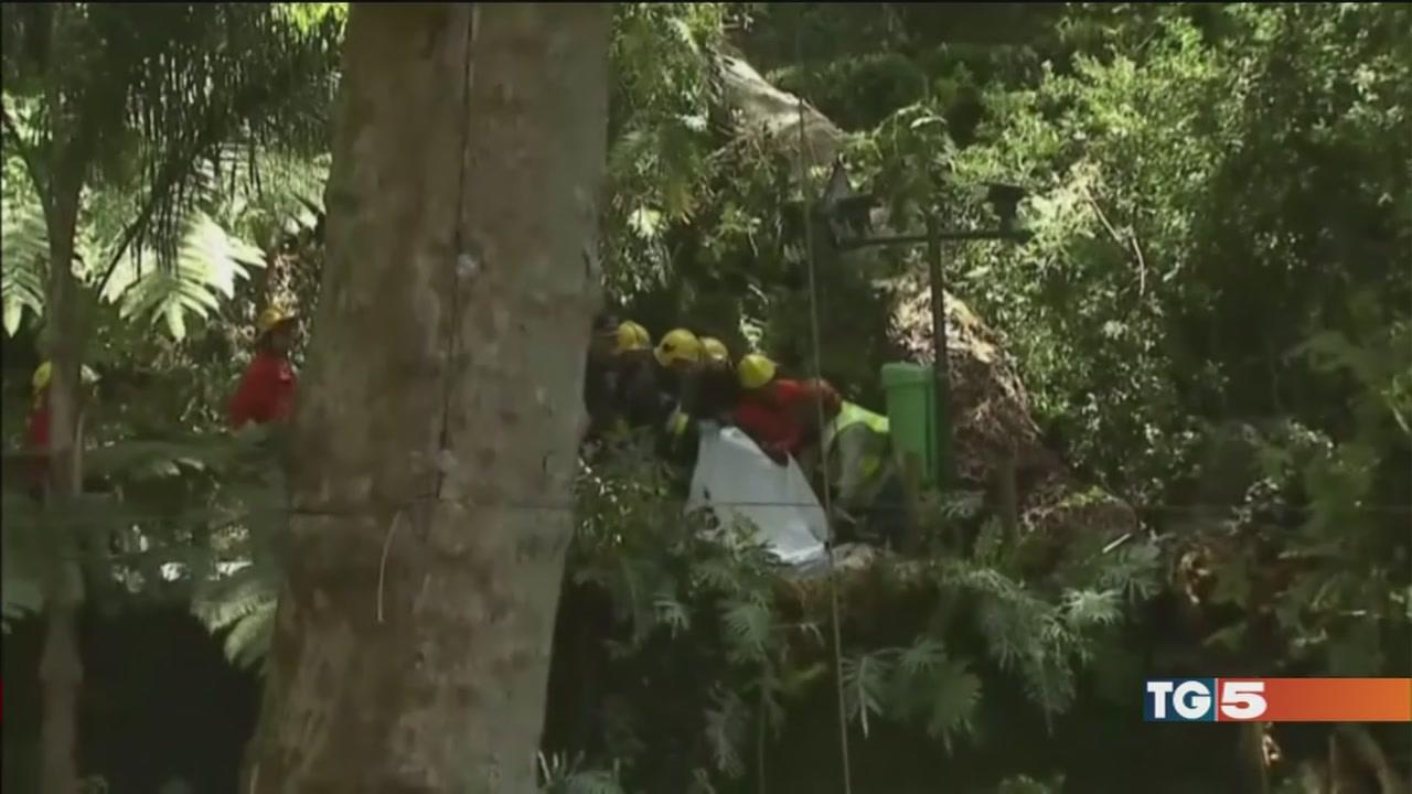 Un albero sui fedeli 12 morti a Madeira