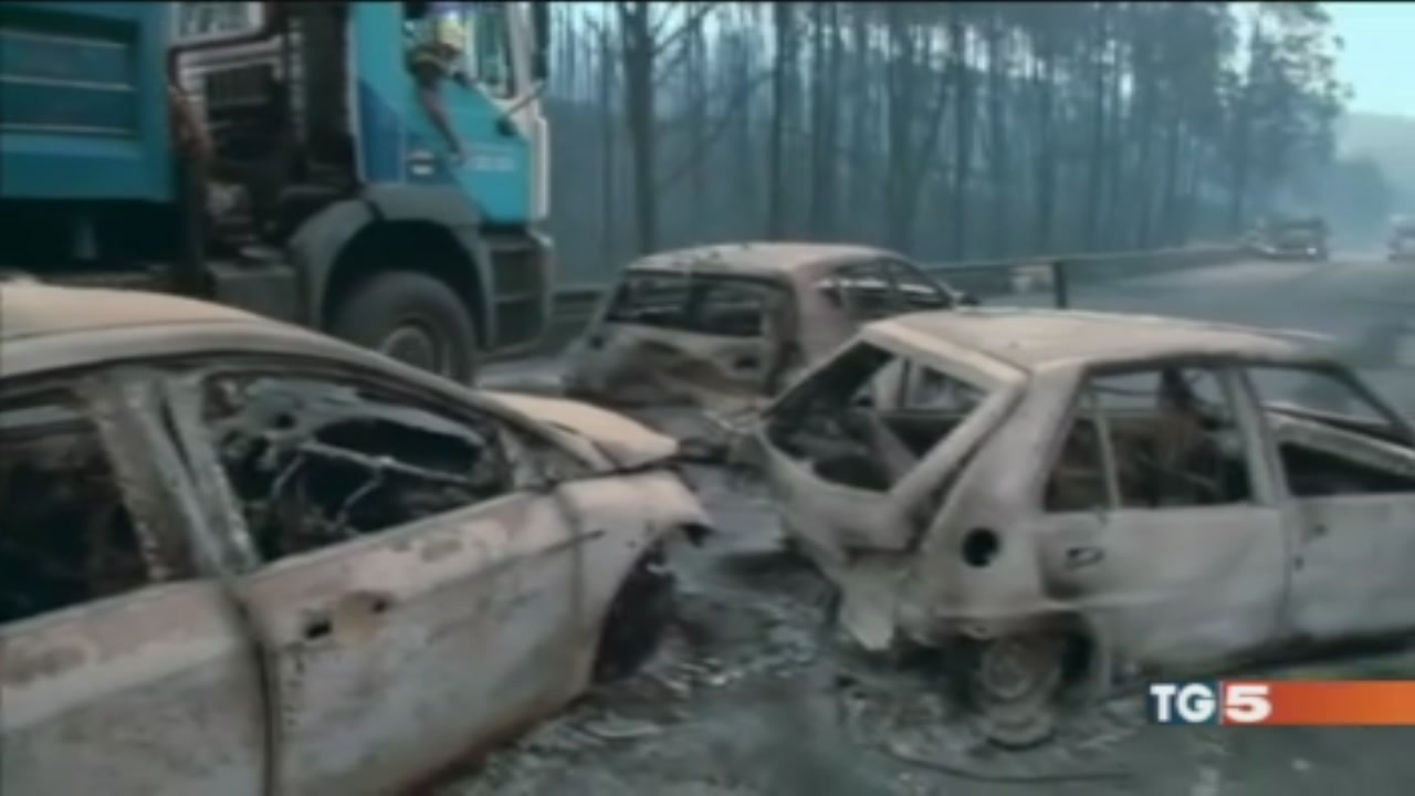 Foresta in fiamme, trappola mortale