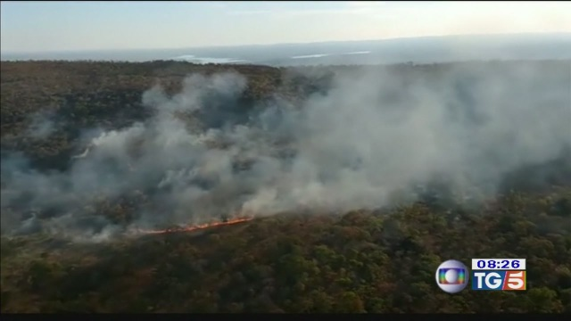 Amazzonia in fiamme, l'emergenza al G-7