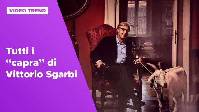 Tutte le volte che Vittorio Sgarbi ha detto 'capra'