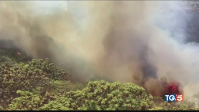 Incendio Gran Canaria 'fiamme inarrestabili'