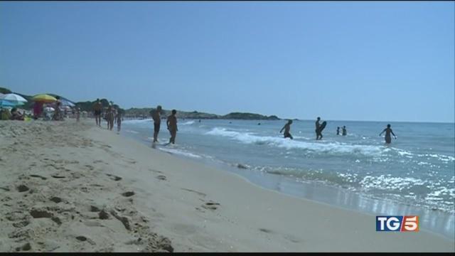 Una domenica al mare, cani in spiaggia libera
