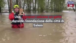 Salem, pompieri salvano un gatto durante l'inondazione della città