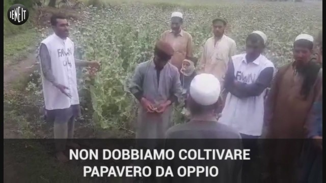 'L'oppio è contro Dio, non coltivatelo'