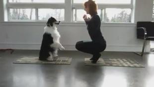 Star di Instagram australiana fa yoga con il suo cane